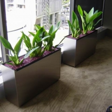 Stainless Planter Box