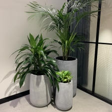 Cluster of Concrete Urn Planters