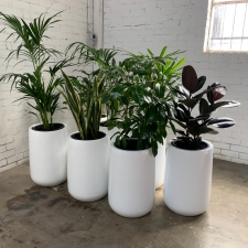 Cluster of Urn Planters