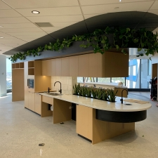 Custom Joinery Feature Plants