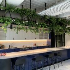 Artificial Plants Above Kitchen