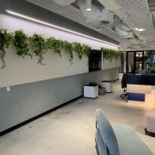Artificial Plants behind Reception